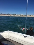 September 2018 Anacapa to Oxnard Swim